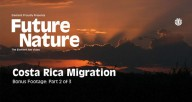 FUTURE-NATURE-'COSTA-RICA-MIGRATION'-Part-2-of-3