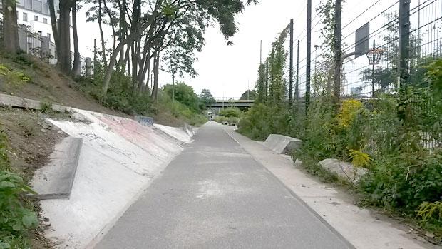 berlin-patineta2