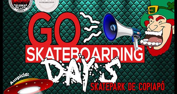 dia-del-skate-skatepark-copiapo